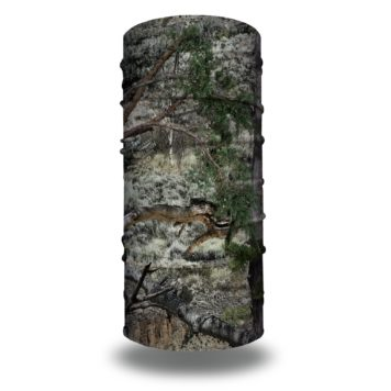 Mossy Oak Mountain Country Face Mask Bandana