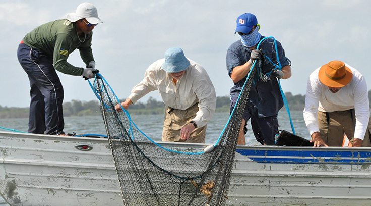 Researchers pulling up a trawl (photo by M.H. Sabaj-Perez).